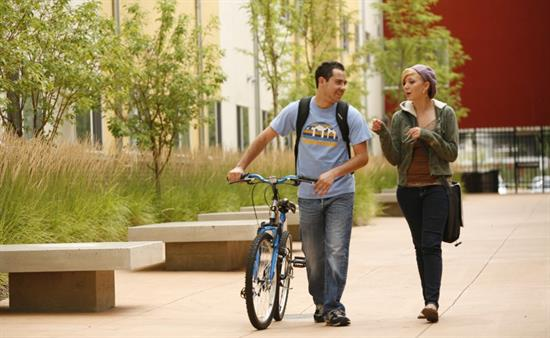 Students walking with bicycle